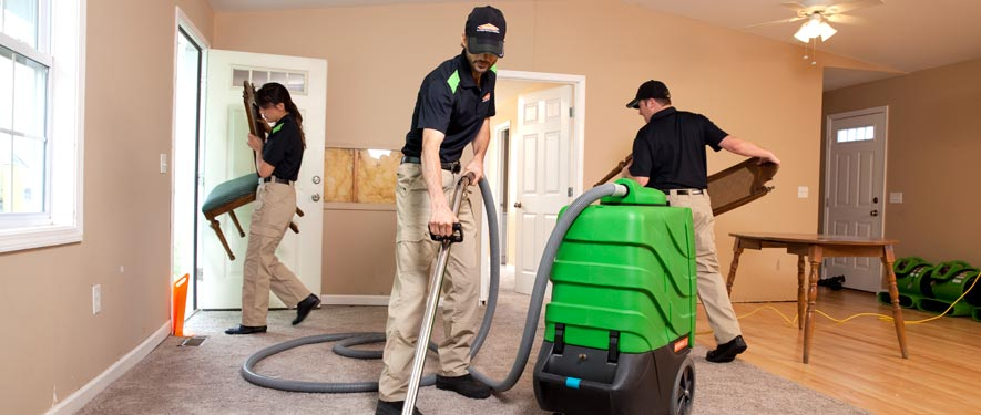 Arlington, MA cleaning services